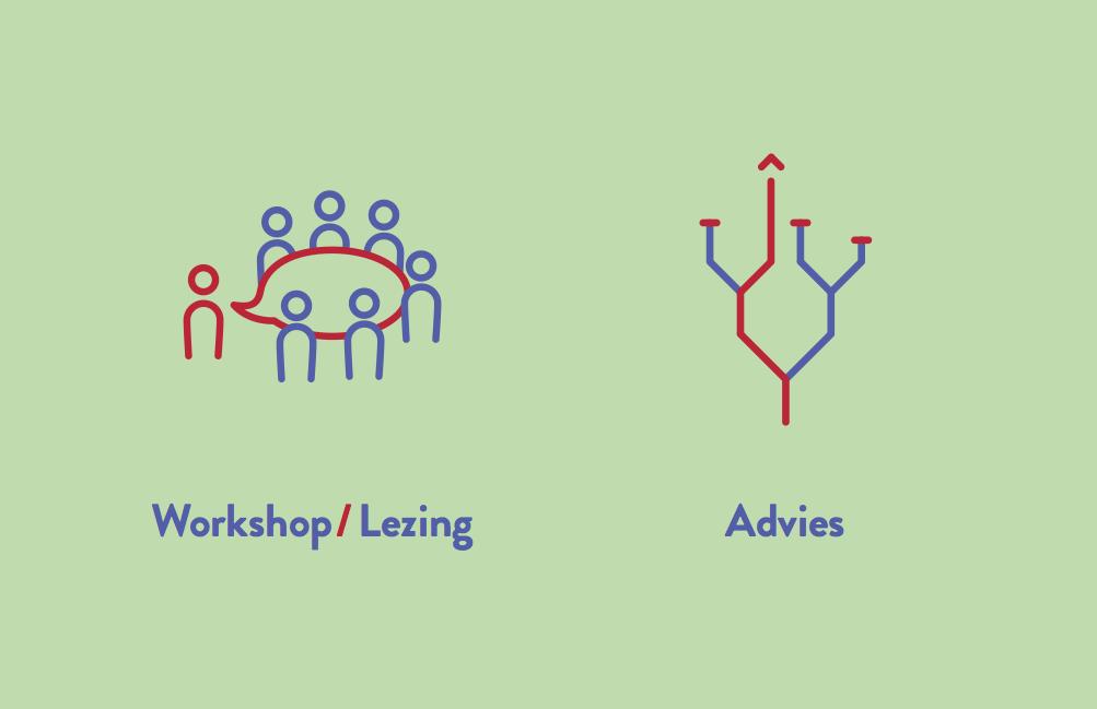 workshop:lezing en advies